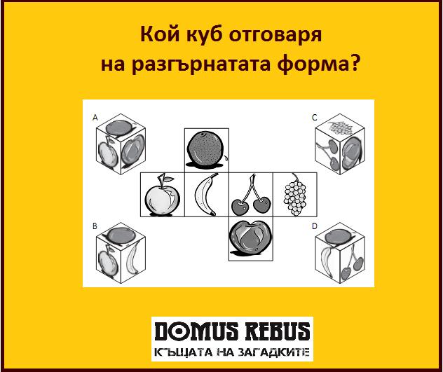 Кой куб отговаря на разгърнатата форма